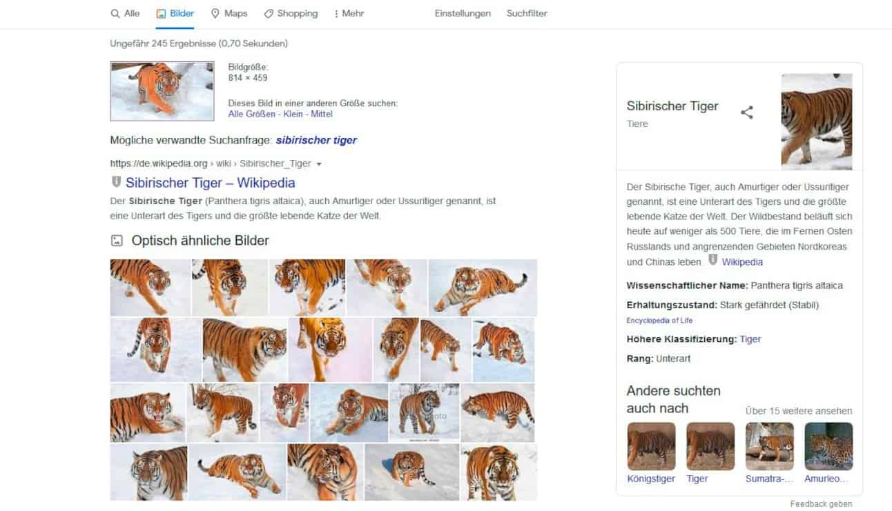 Google Suche Bilder Tipps