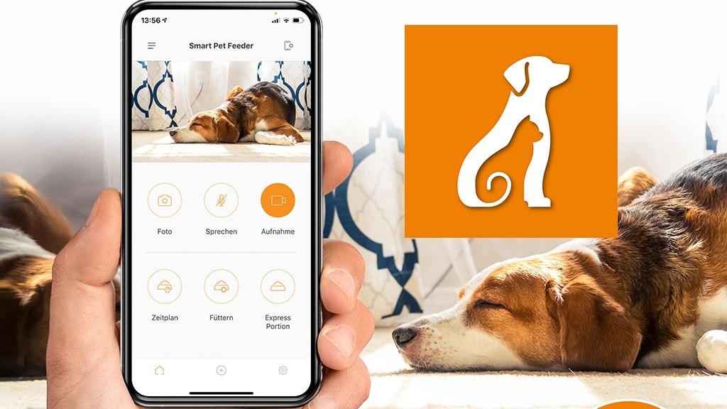 Futterautomat mit Appsteuerung für Haustiere