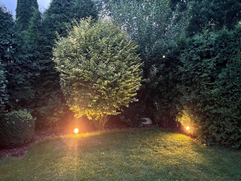 Rasen und große Büsche und Bäume bei Dämmerlicht mit warm leuchtenden Lampen am Boden