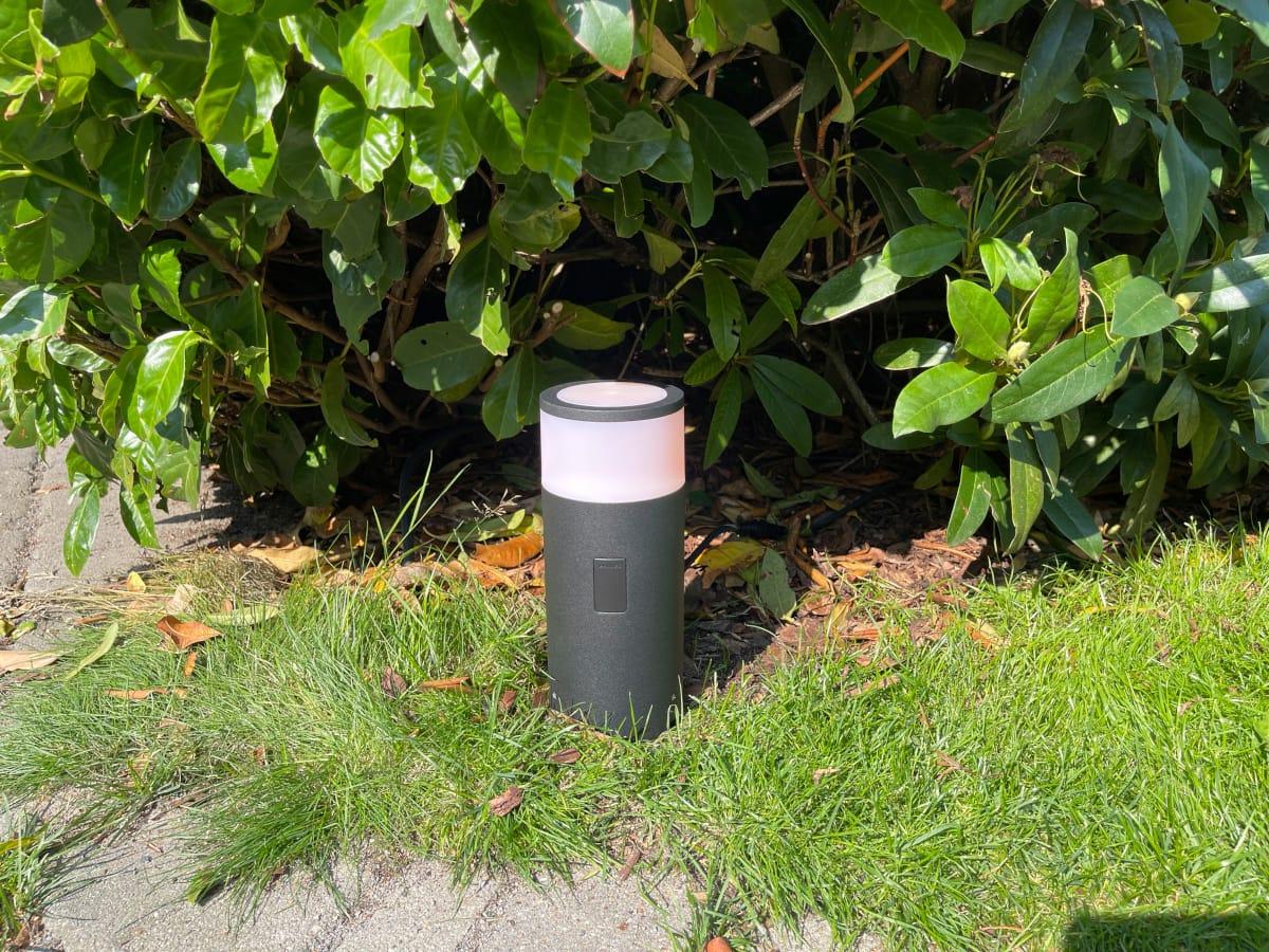 Schwarz weiße Sockelleuchte auf Rasen vor Busch aufgestellt