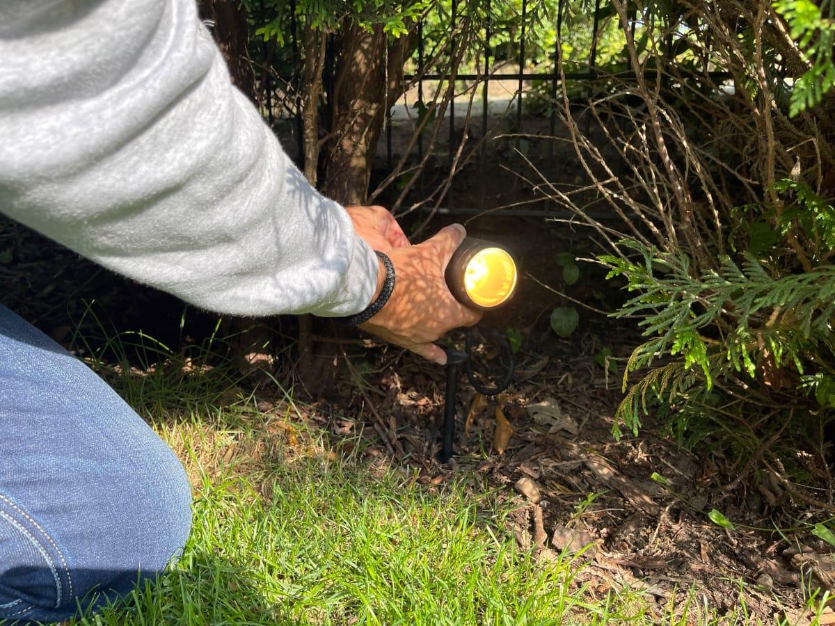 Hand drückt schwarze Gartenleuchte in den Boden
