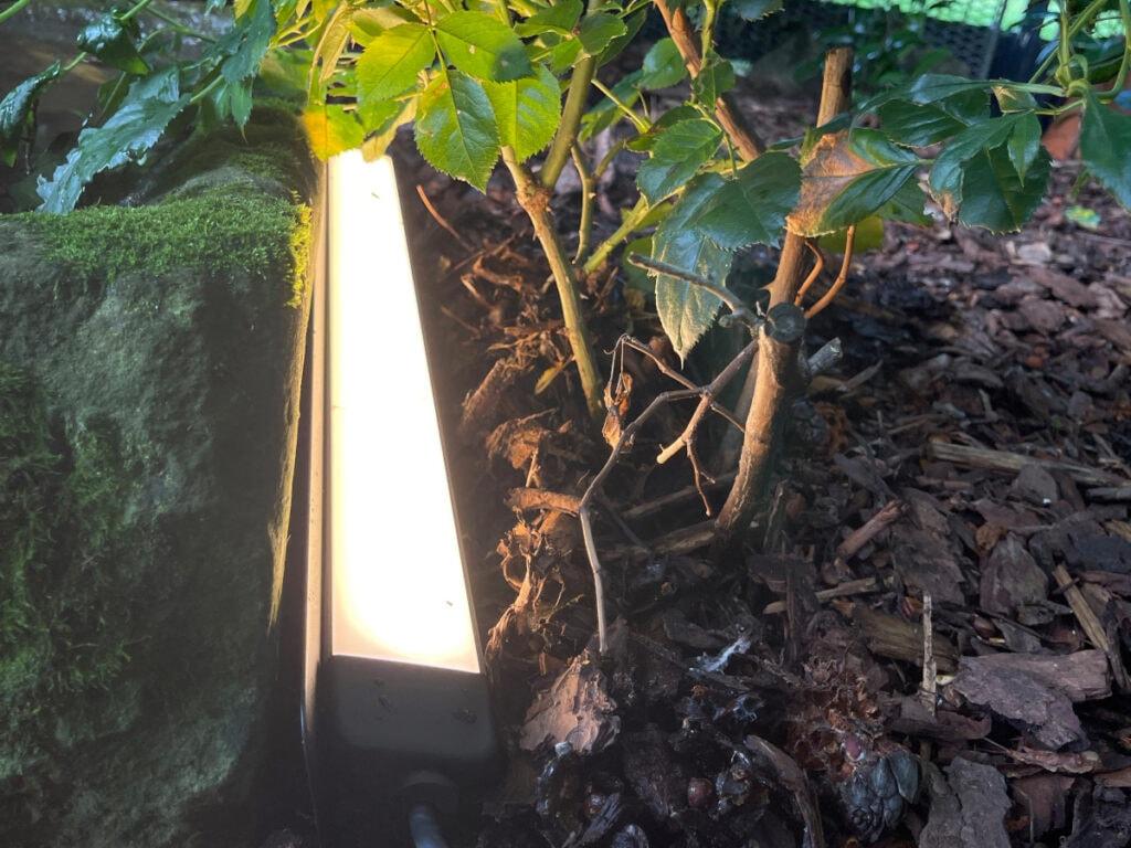 Längliche strahlende leuchte neben Busch und Stein auf dem Boden hingelegt